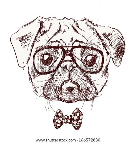 Black And White Pug Glasses Free Image