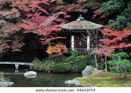 Vintage Japanese temple with autumn maple - stock photo