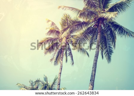 Vintage nature background of coconut palm tree on tropical beach blue sky with sunlight of morning in summer,photo paper texture with  instagram filter