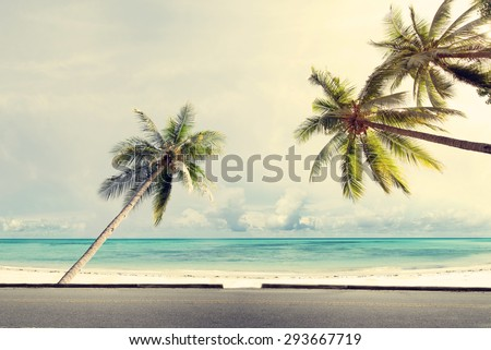Vintage nature background of coconut palm tree on tropical beach blue sky with sunlight of morning in summer,  retro effect filter #293667719