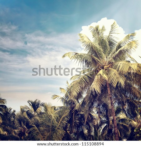 Vintage nature beach background