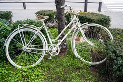 Vintage old white bicycle is parked on the lawn with green grass as art object, leaning on exotic palm tree and surrounded by little bushes.