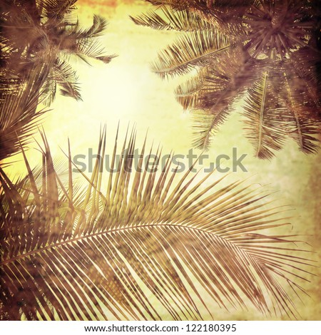 vintage palm background