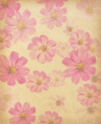 vintage paper background with cosmea flowers