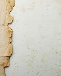 vintage paper; pergament