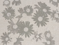 Vintage paper texture with a bulk of daisies sketched