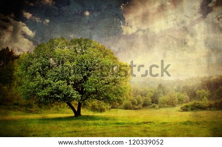 vintage pastoral landscape with single tree