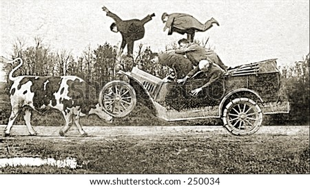 vintage photo of a car and cow...