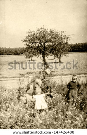 Vintage photo of children playing on farm, fifties