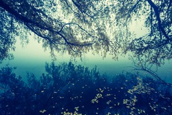 vintage photo of foggy lake landscape