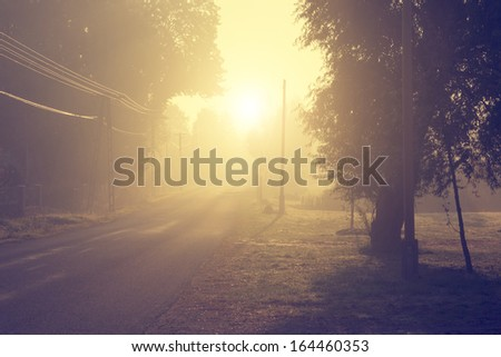 vintage photo of foggy road