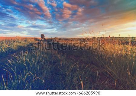 vintage photo of sunset on field. rural landscape