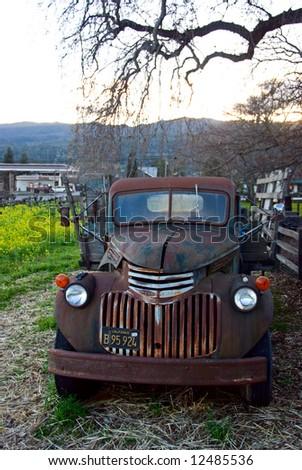 Vintage pickup abandoned in vineyard