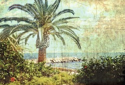 Vintage postcard. Tropical scene. Sea coast of Cyprus.