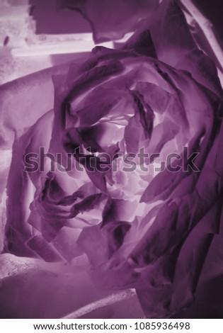 Vintage rose flowers #1085936498