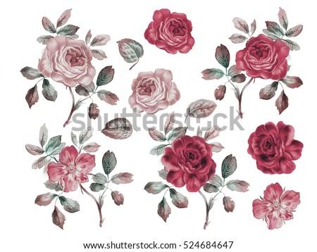 vintage roses set. watercolor...