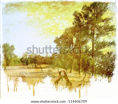 Vintage rural landscape with two rearing horses