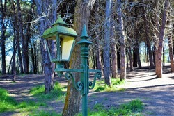 Vintage rustic lantern in a pine forest near a sand and dust road