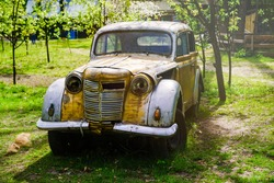 Vintage rusty passenger car in the park