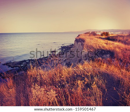 vintage sea background/summer sea background