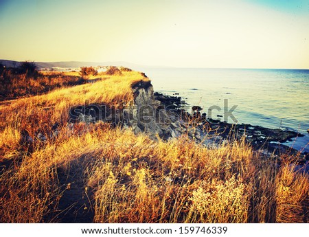 vintage sea background/ summer sea background