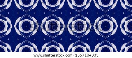 Vintage Seamless Pattern Tile. Ethnic Ornament Print. Ethnic Ornament Print. Blue Green Dressing element Antique Element Hand Drawn. Kaleidoscope Art. Floral Elements Floral Design.