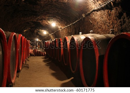 Vintage series 25. Wine barrels in traditional wine cellar.