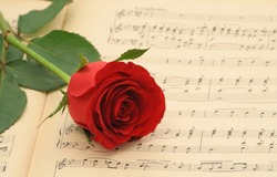 Vintage sheet music with red rose - focus on the rose (shallow DOF)