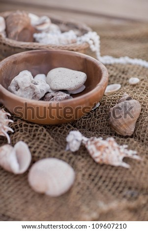 Vintage still life with network and seashell
