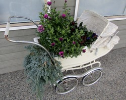 Vintage stroller reused as plant pots holder