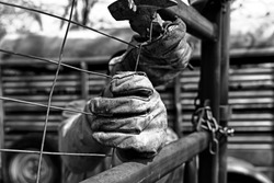 Vintage style hard work shows leather work gloves close up during fencing on farm, detail in rugged manual labor.