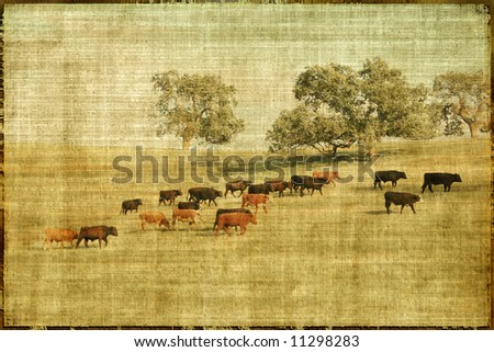 Vintage Style Landscape With Cows And Pasture