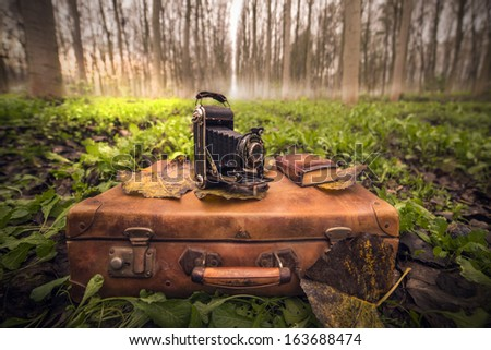 vintage suitcase and camera