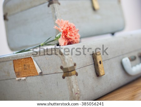 Vintage Suitcases and flower #385056241