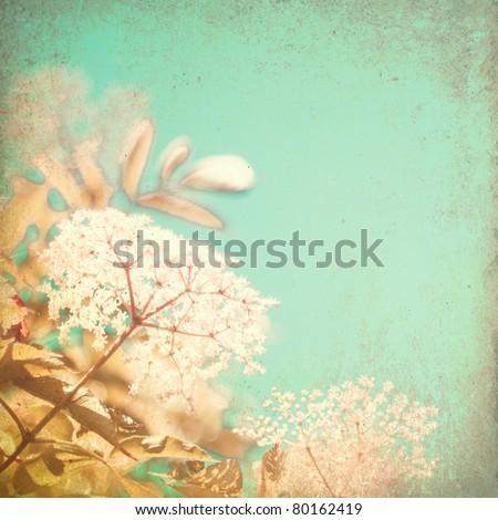 Vintage summer flowers