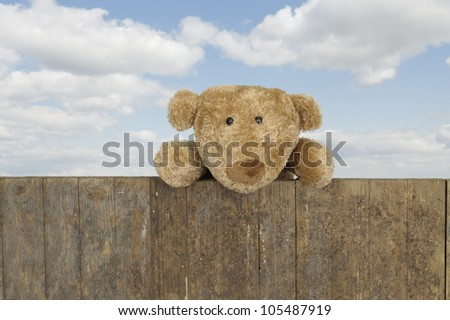 vintage teddy bear looking from above a fence