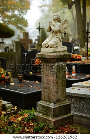 vintage 19th century graves in...