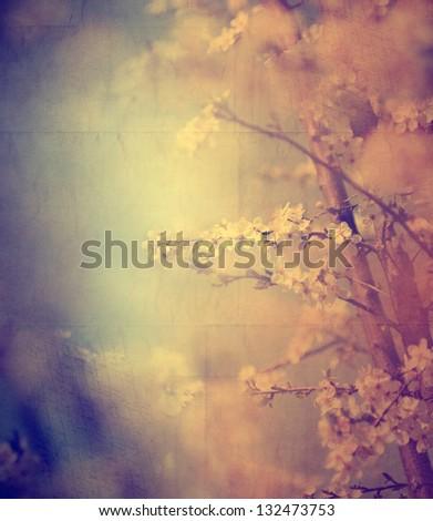 vintage tree flower photo of ...