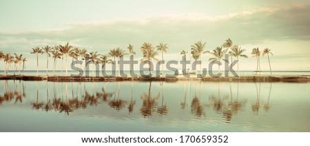 vintage tropical hawaiian beach ...