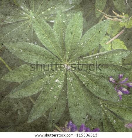 vintage wallpaper background with leaf