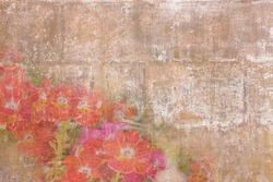 Vintage wallpaper with a border of small red flowers