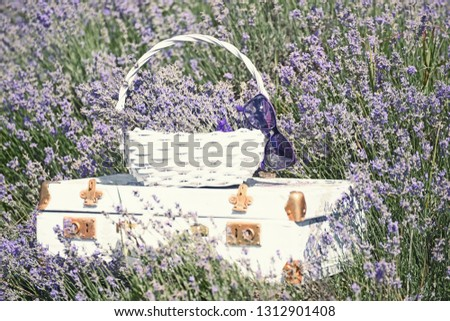 Vintage white suitcase and a white basket with lavender flo in a lavender field.  #1312901408