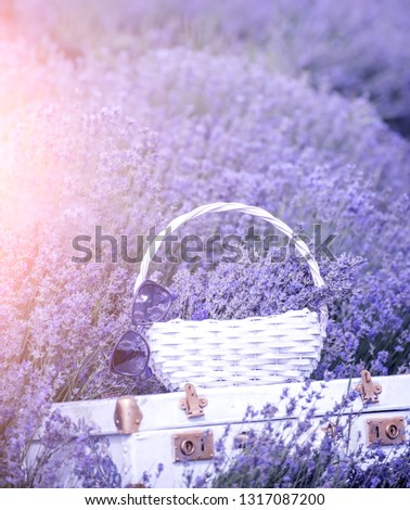 Vintage white suitcase and a white basket with lavender flo in a lavender field.  #1317087200