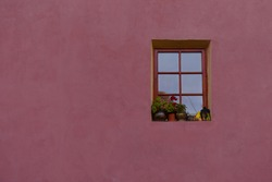 Vintage window with flowers in front of it, on a pink wall
