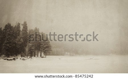 vintage winter landscape with spooky tree and frozen lake