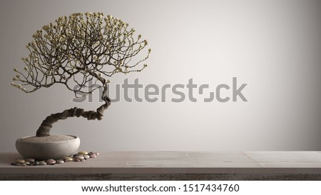 Vintage wooden table shelf with pebble and potted bloom bonsai, white flowers, white background with copy space, zen concept interior design, 3d illustration Stock fotó ©