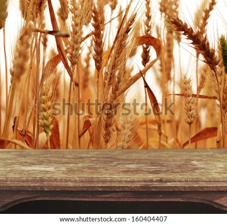 Vintage wooden table with natural background