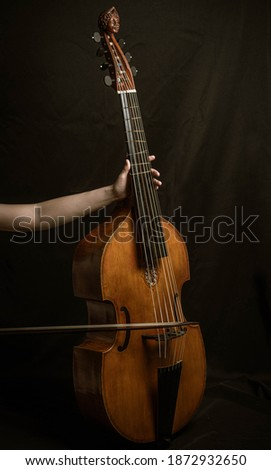 Viola da Gamba instrument photography Foto d'archivio ©