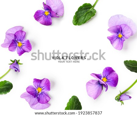 Viola pansy flower creative layout and composition. Lilac spring flowers and leaves  isolated on white background. Floral arrangement, design element. Springtime concept. Top view, flat lay  Сток-фото ©