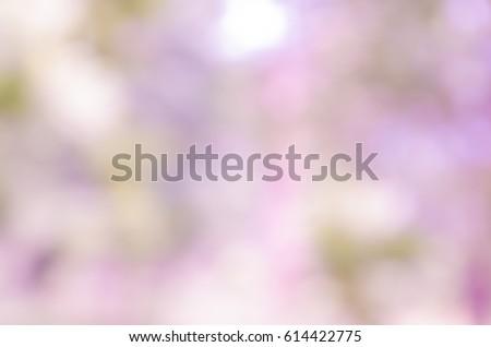 violet abstract bokeh...